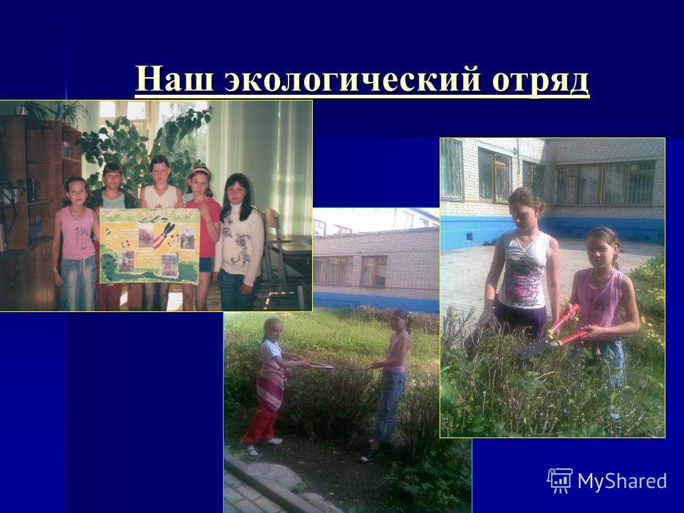 Наш экологический отряд Наш экологический отряд