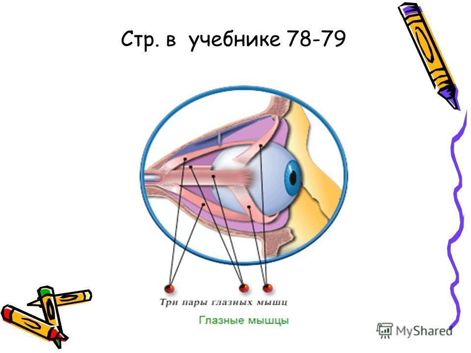 Стр. в учебнике 78-79