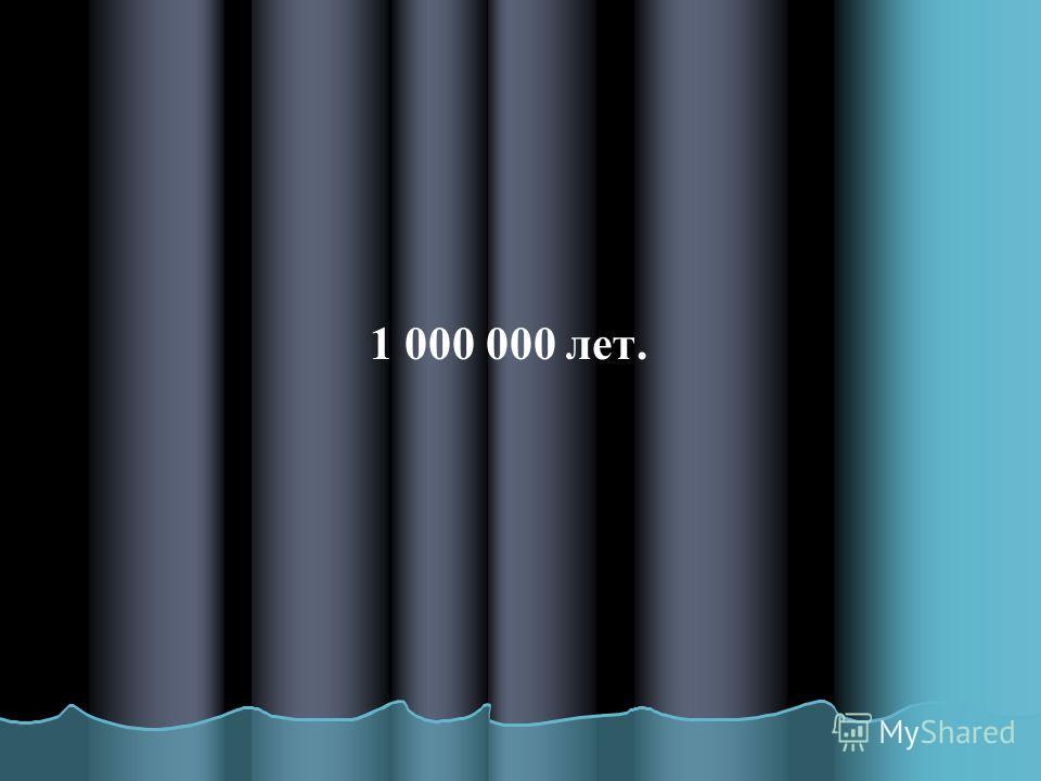 1 000 000 лет.