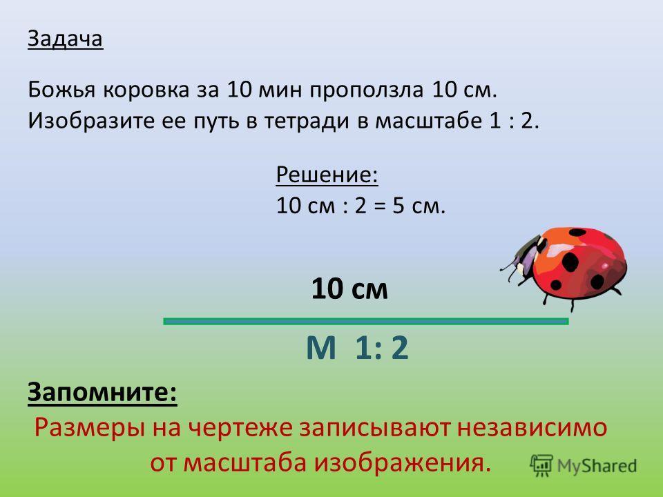 Задача Божья коровка за 10 мин проползла 10 см. Изобразите ее путь в тетради в масштабе 1 : 2. Запомните: Размеры на чертеже записывают независимо от масштаба изображения. М 1: 2 10 см Решение: 10 см : 2 = 5 см.