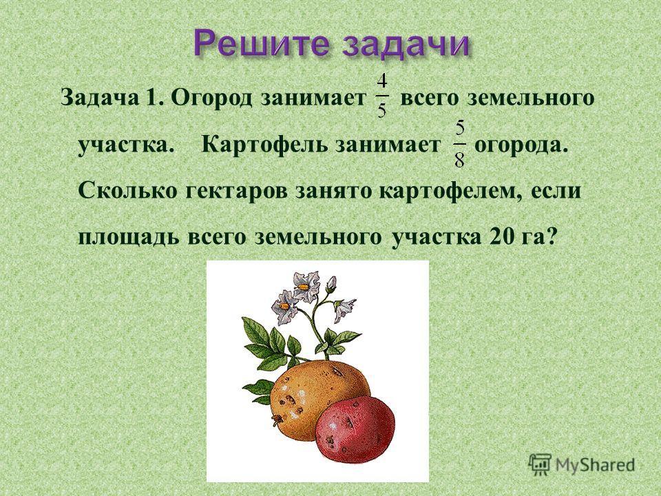 Задача 1. Огород занимает всего земельного участка. Картофель занимает огорода. Сколько гектаров занято картофелем, если площадь всего земельного участка 20 га ?