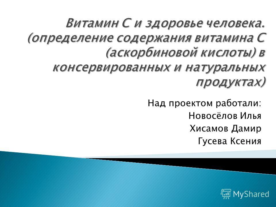 Над проектом работали: Новосёлов Илья Хисамов Дамир Гусева Ксения