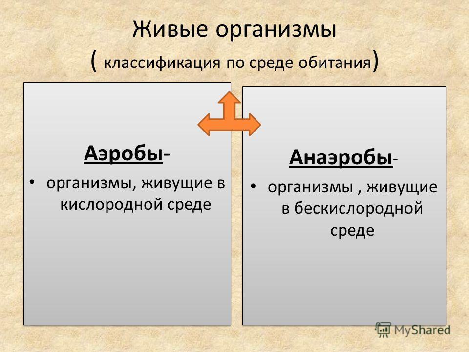 Живые организмы ( классификация по среде обитания ) Аэробы- организмы, живущие в кислородной среде Аэробы- организмы, живущие в кислородной среде Анаэробы - организмы, живущие в бескислородной среде Анаэробы - организмы, живущие в бескислородной сред