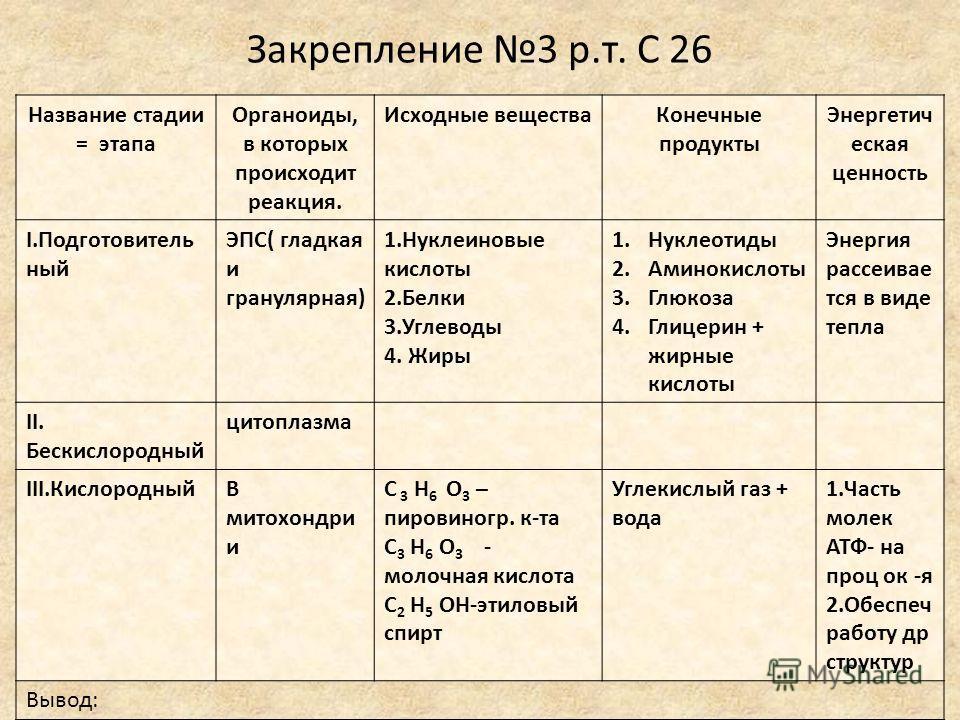 Закрепление 3 р.т. С 26 Название стадии = этапа Органоиды, в которых происходит реакция. Исходные веществаКонечные продукты Энергетич еская ценность I.Подготовитель ный ЭПС( гладкая и гранулярная) 1.Нуклеиновые кислоты 2.Белки 3.Углеводы 4. Жиры 1.Ну