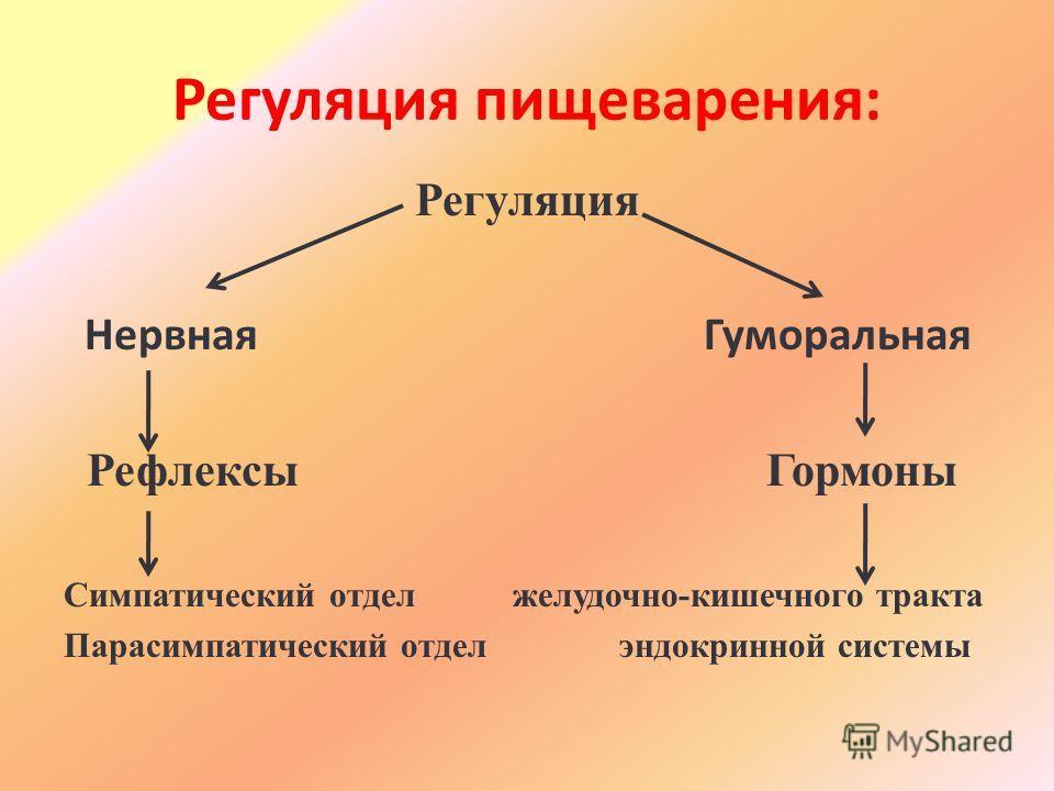 Регуляция пищеварения: Регуляция Нервная Гуморальная Рефлексы Гормоны Симпатический отдел желудочно-кишечного тракта Парасимпатический отдел эндокринной системы