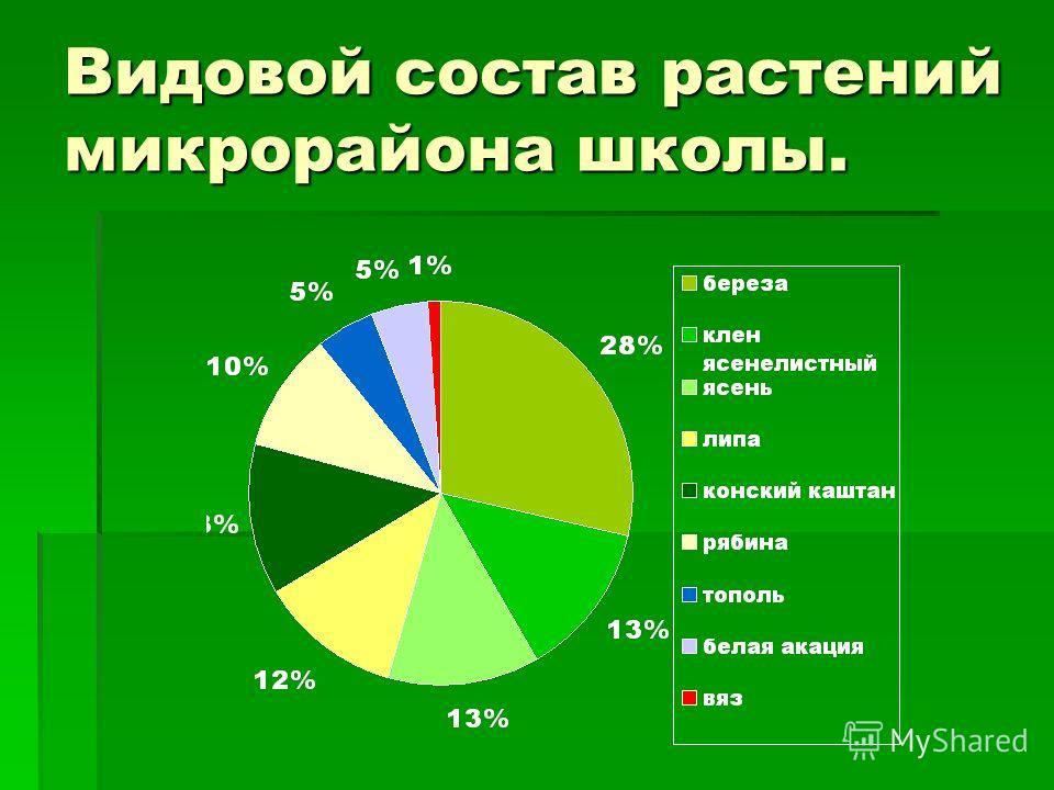 Видовой состав растений микрорайона школы.
