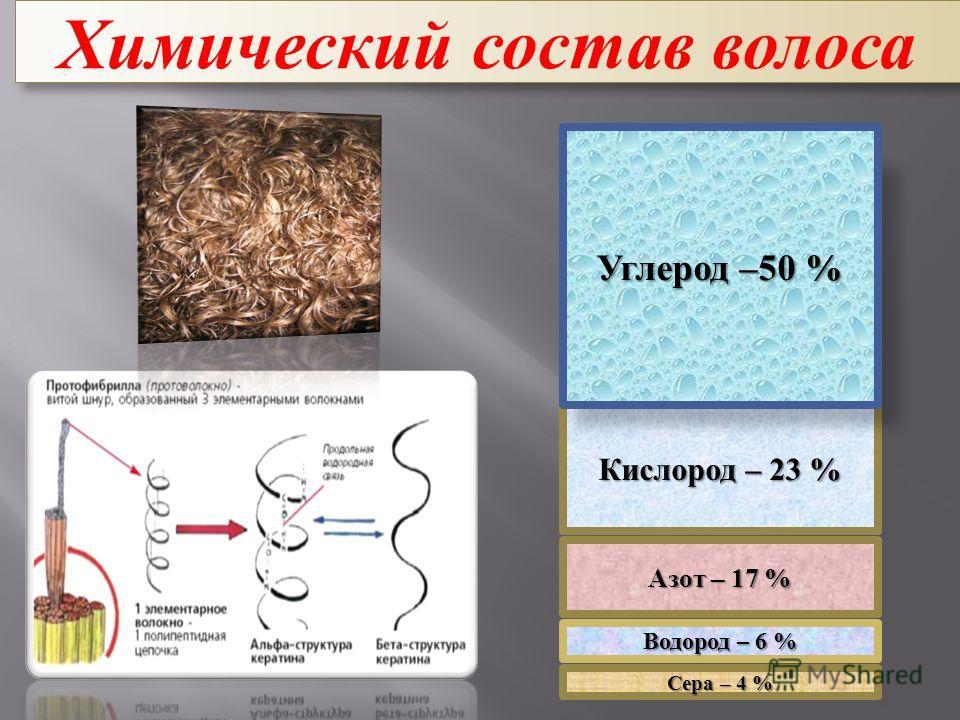 Химический состав волоса Сера – 4 % Кислород – 23 % Азот – 17 % Углерод –50 % Водород – 6 %