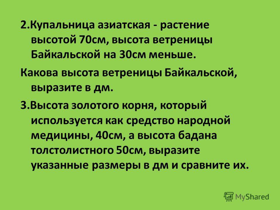 2.Купальница азиатская - растение высотой 70см, высота ветреницы Байкальской на 30см меньше. Какова высота ветреницы Байкальской, выразите в дм. 3.Высота золотого корня, который используется как средство народной медицины, 40см, а высота бадана толст