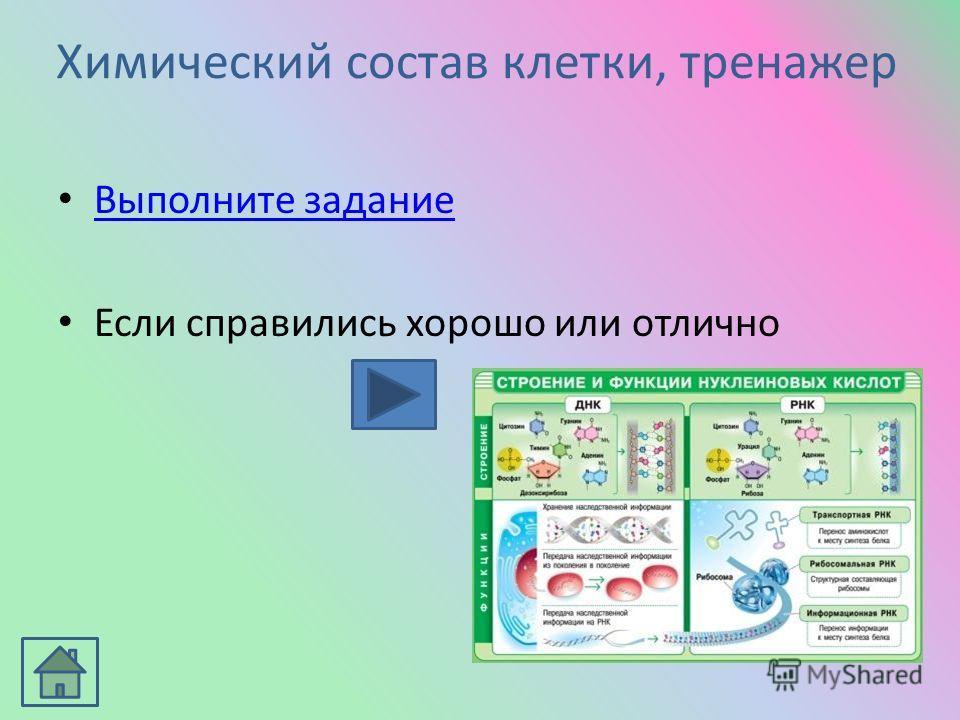 Основы учения о клетке Основные темы раздела 1.Химический состав клеткиХимический состав клетки 2. Структура и функции клеткиСтруктура и функции клетки 3. Обеспечение клеток энергиейОбеспечение клеток энергией 4.Молекулярная биологияМолекулярная биол