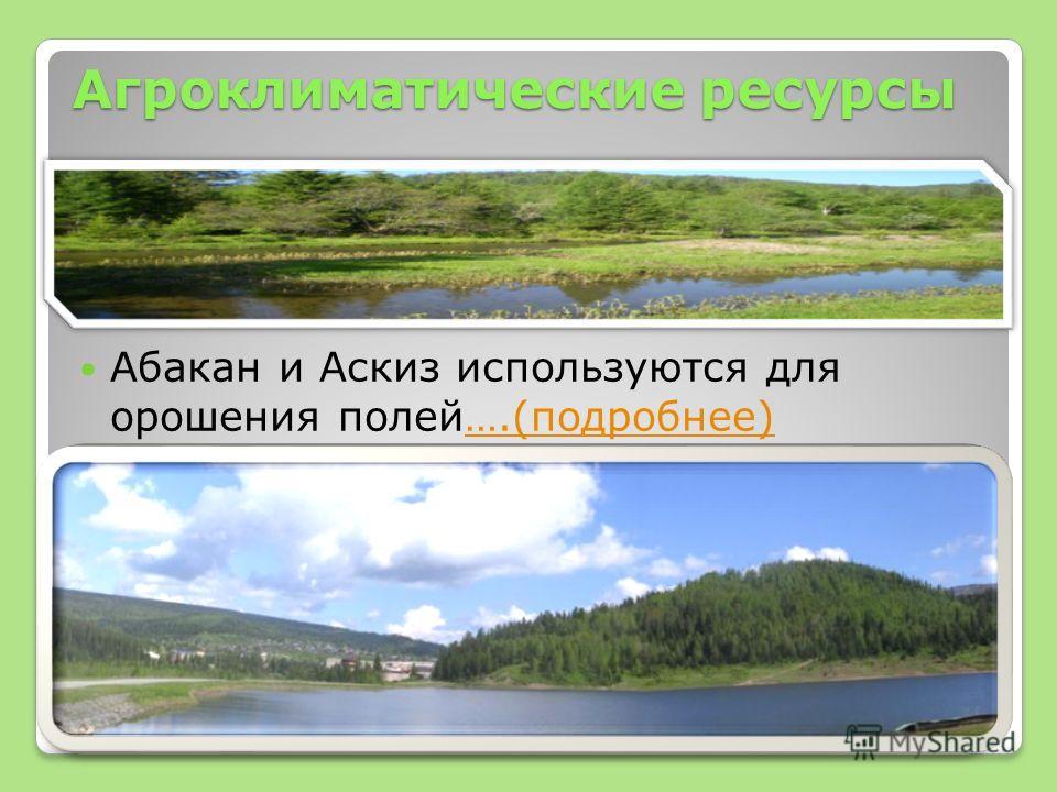 Агроклиматические ресурсы Абакан и Аскиз используются для орошения полей….(подробнее)….(подробнее)