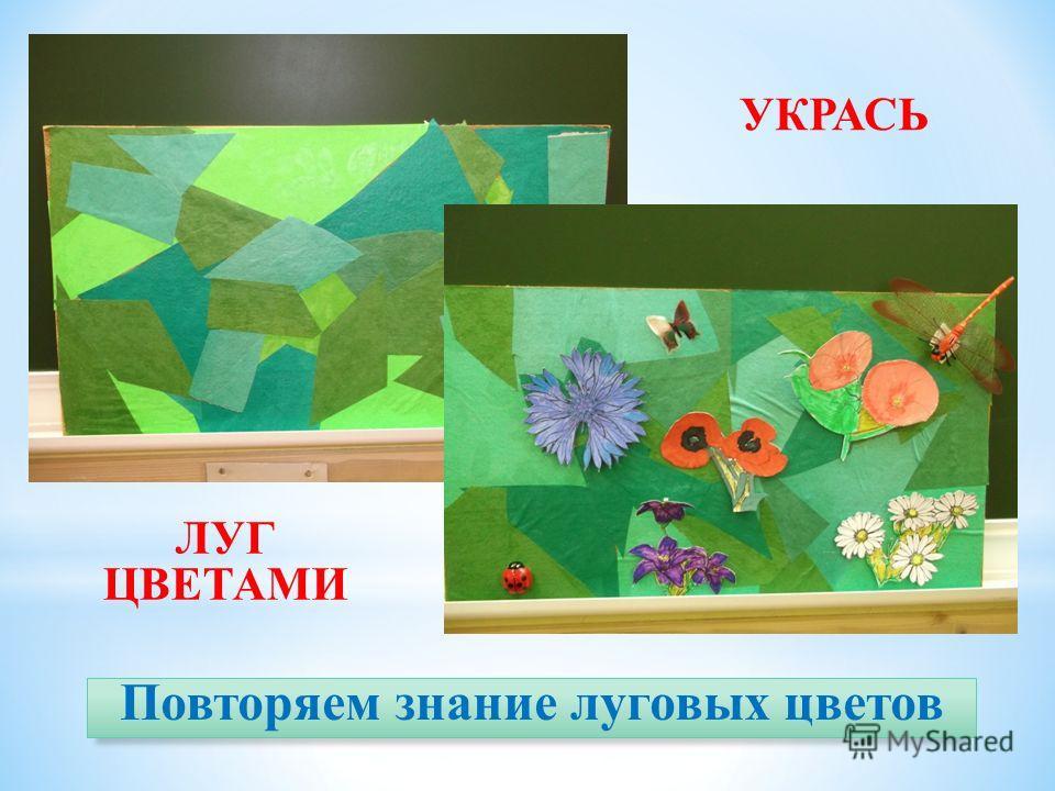 Повторяем знание луговых цветов УКРАСЬ ЛУГ ЦВЕТАМИ