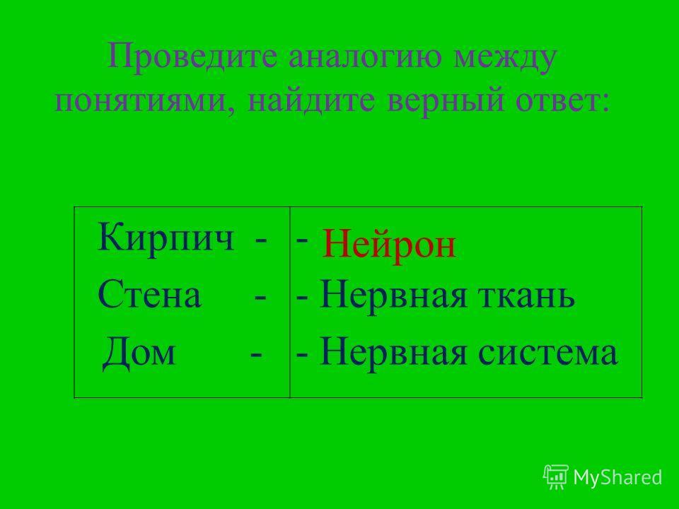Кирпич - Стена - Дом - - ? - Нервная ткань - Нервная система Проведите аналогию между понятиями, найдите верный ответ: Нейрон
