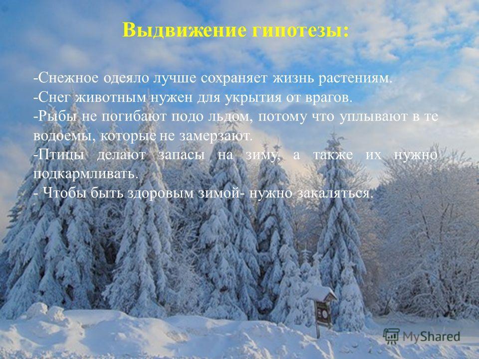 Выдвижение гипотезы: -Снежное одеяло лучше сохраняет жизнь растениям. -Снег животным нужен для укрытия от врагов. -Рыбы не погибают подо льдом, потому что уплывают в те водоемы, которые не замерзают. -Птицы делают запасы на зиму, а также их нужно под