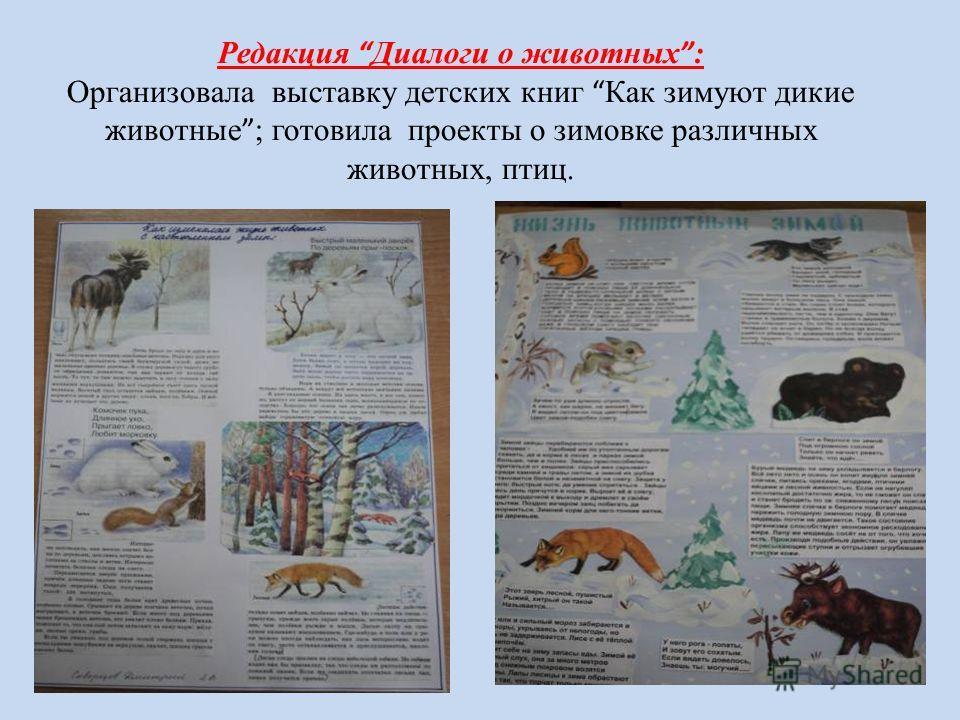 Редакция Диалоги о животных : Организовала выставку детских книг Как зимуют дикие животные ; готовила проекты о зимовке различных животных, птиц.
