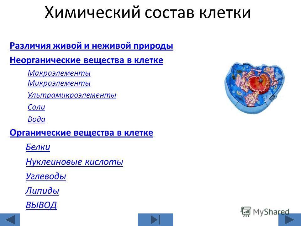 Конспект урока по биологии 9 класс по теме неорганические вещества входящие в состав клетки