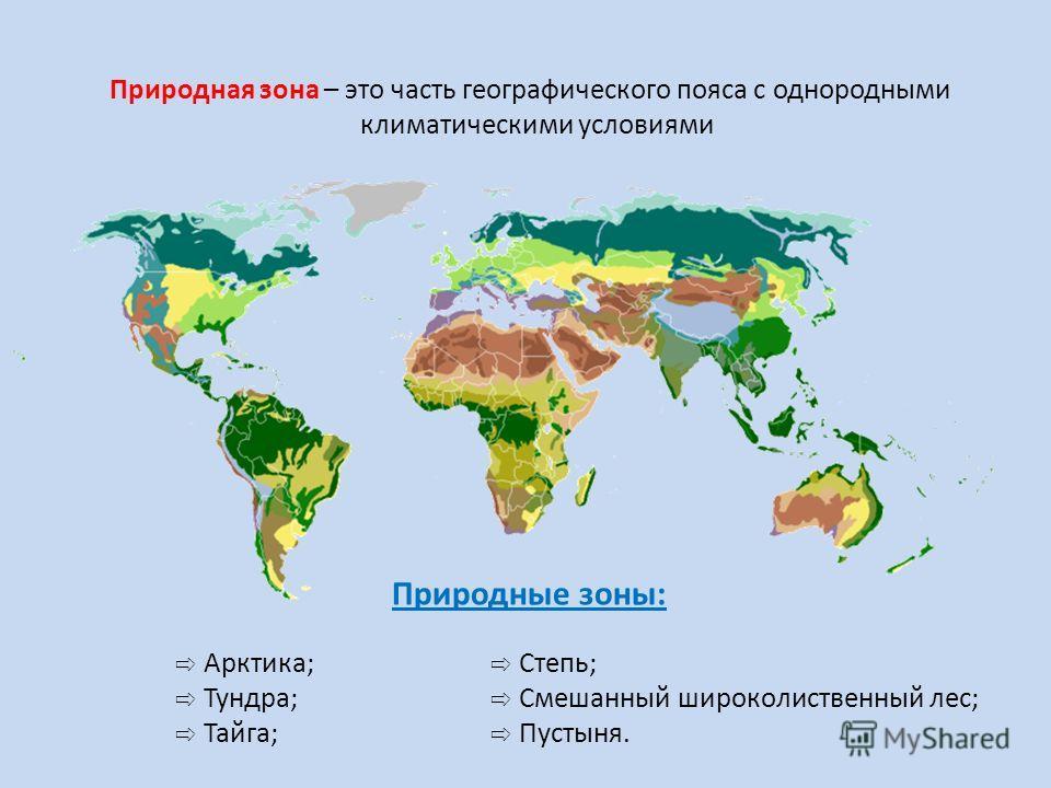 Природная зона – это часть географического пояса с однородными климатическими условиями Природные зоны: Арктика; Степь; Тундра; Смешанный широколиственный лес; Тайга; Пустыня.