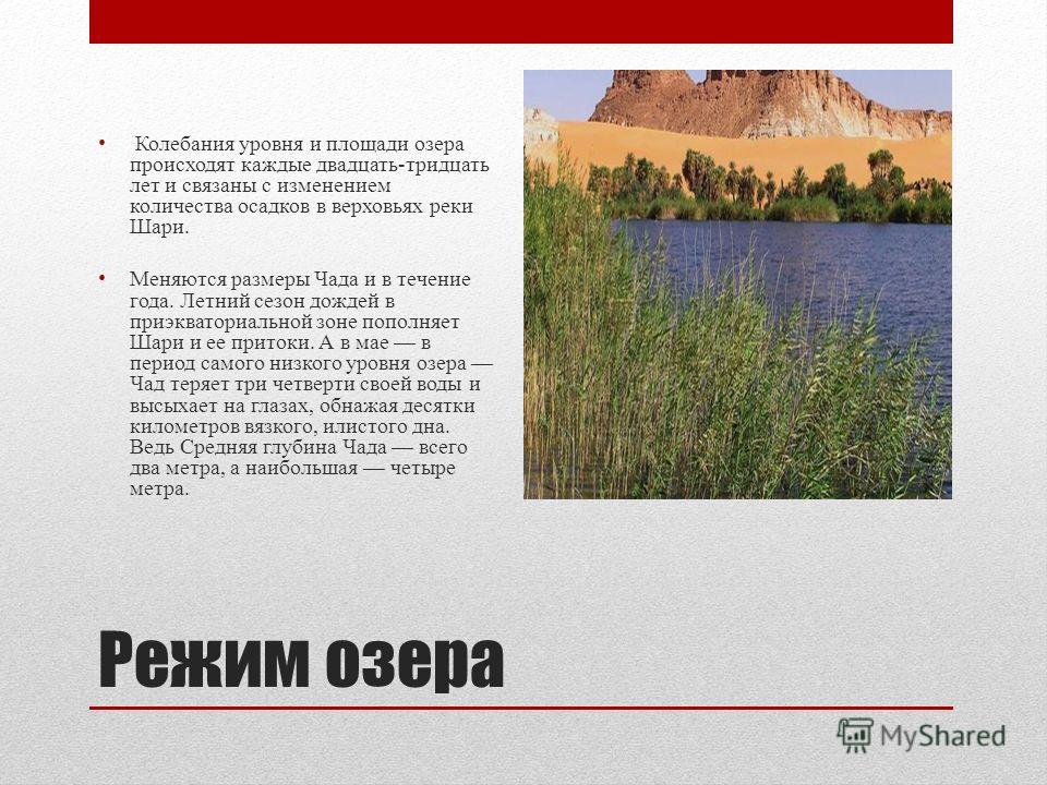 Режим озера Колебания уровня и площади озера происходят каждые двадцать-тридцать лет и связаны с изменением количества осадков в верховьях реки Шари. Меняются размеры Чада и в течение года. Летний сезон дождей в приэкваториальной зоне пополняет Шари
