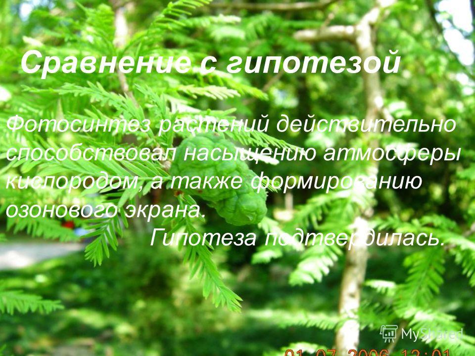 Сравнение с гипотезой. Фотосинтез растений действительно способствовал насыщению атмосферы кислородом, а также формированию озонового экрана. Гипотеза подтвердилась. Фотосинтез растений действительно способствовал насыщению атмосферы кислородом, а та