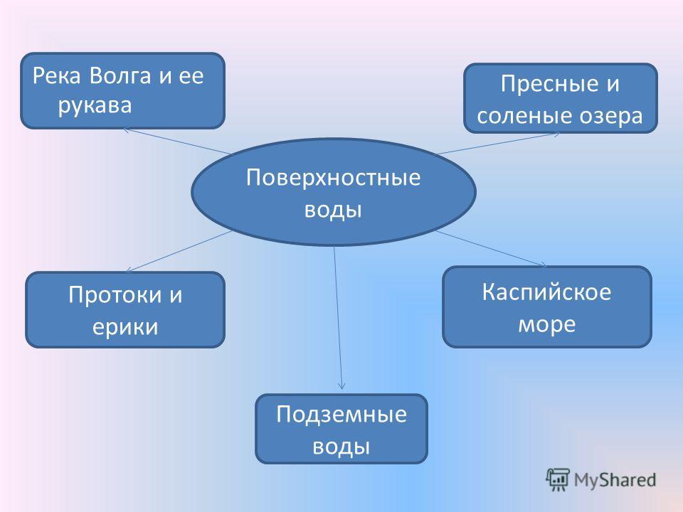 Поверхностные воды Протоки и ерики Река Волга и ее рукава Подземные воды Пресные и соленые озера Каспийское море
