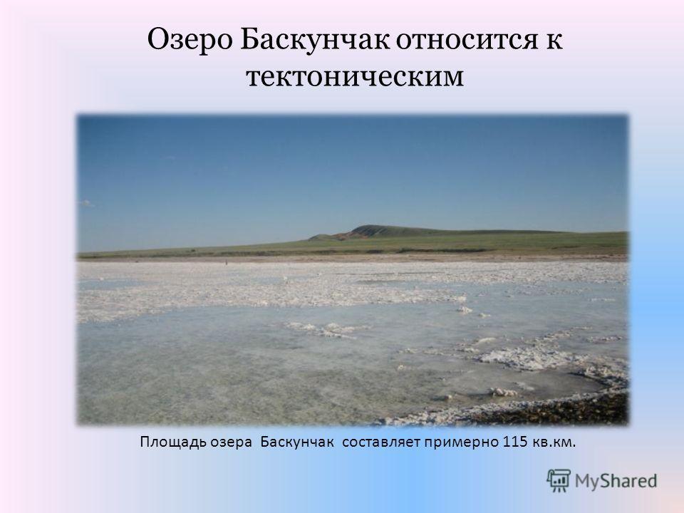 Площадь озера Баскунчак составляет примерно 115 кв.км. Озеро Баскунчак относится к тектоническим