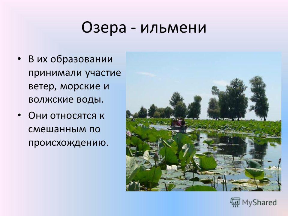 Озера - ильмени В их образовании принимали участие ветер, морские и волжские воды. Они относятся к смешанным по происхождению.