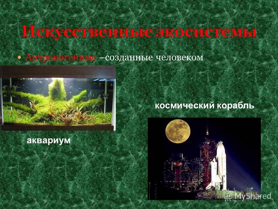 Антропогенные –созданные человеком аквариум космический корабль