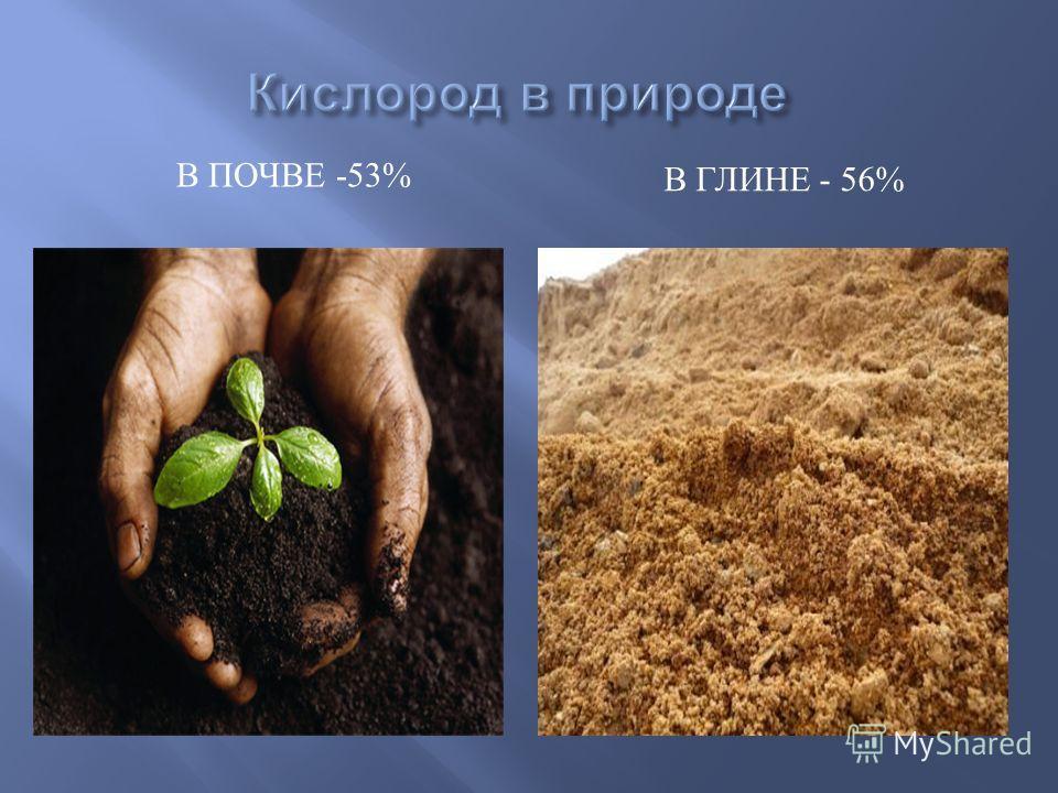 В ПОЧВЕ -53% В ГЛИНЕ - 56%
