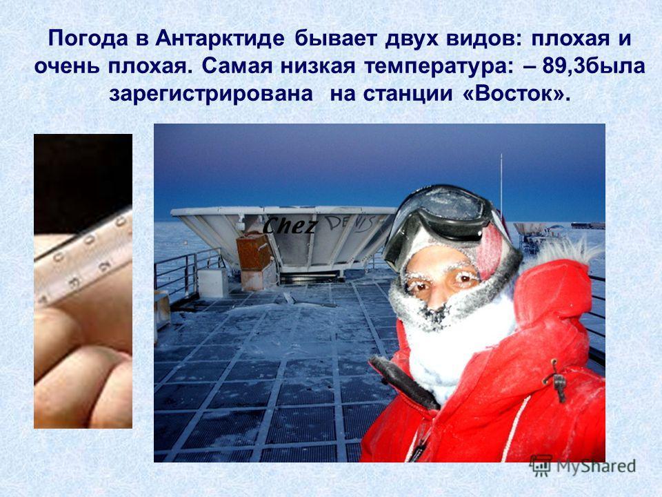 Погода в Антарктиде бывает двух видов: плохая и очень плохая. Самая низкая температура: – 89,3была зарегистрирована на станции «Восток».