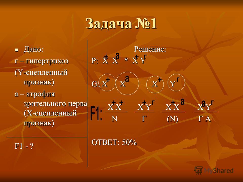 Задача 1 Дано: Дано: г – гипертрихоз (Y-сцепленный признак) а – атрофия зрительного нерва (Х-сцепленный признак) F1 - ? Решение: Решение: P: X X * X Y G: X X X Y X X X Y X X X Y X X X Y X X X Y N Г (N) Г А N Г (N) Г А ОТВЕТ: 50%