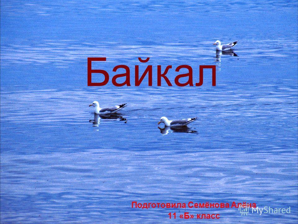 Подготовила Семёнова Алёна 11 «Б» класс Байкал