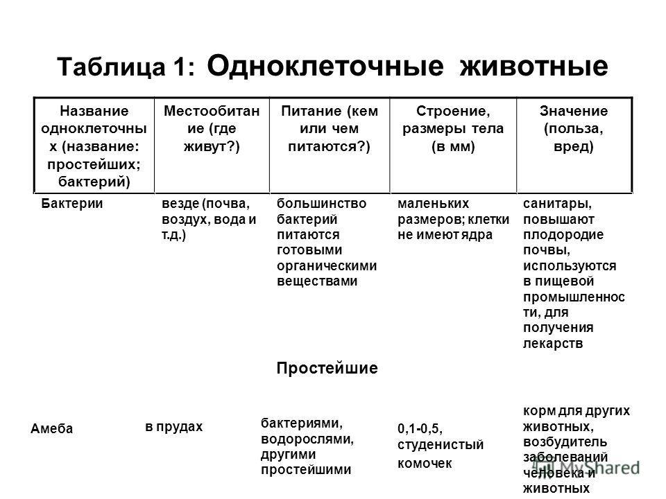 Таблица 1: Одноклеточные животные Название одноклеточны х (название: простейших; бактерий) Местообитан ие (где живут?) Питание (кем или чем питаются?) Строение, размеры тела (в мм) Значение (польза, вред) Бактериималеньких размеров; клетки не имеют я