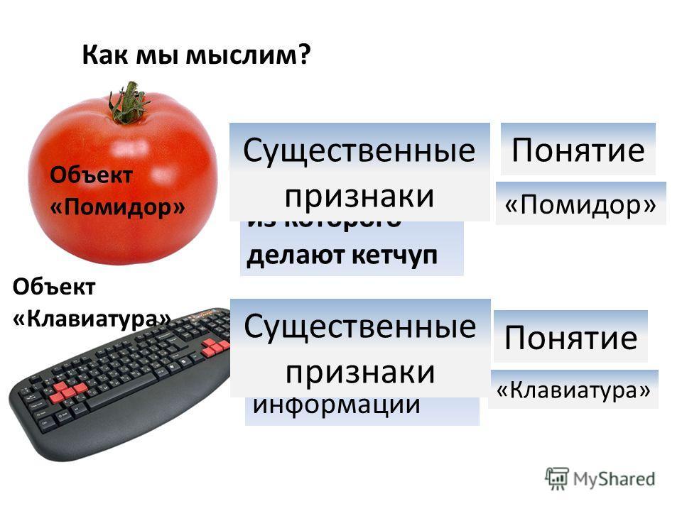 Как мы мыслим? Красный, круглый овощ, из которого делают кетчуп Объект «Помидор» Существенные признаки Понятие «Помидор» Устройство для ввод текстовой информации Понятие «Клавиатура» Объект «Клавиатура» Существенные признаки