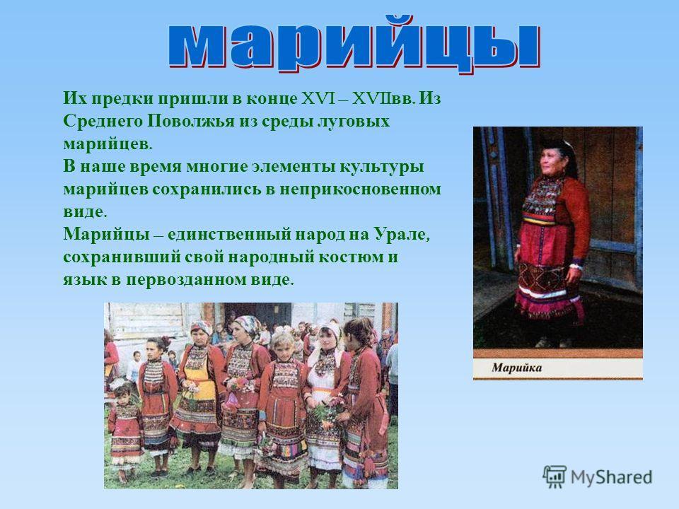 Их предки пришли в конце XVI – XVII вв. Из Среднего Поволжья из среды луговых марийцев. В наше время многие элементы культуры марийцев сохранились в неприкосновенном виде. Марийцы – единственный народ на Урале, сохранивший свой народный костюм и язык