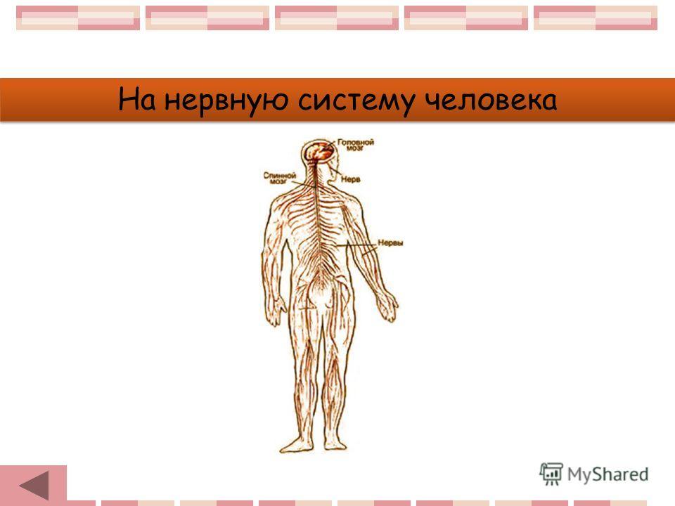 На нервную систему человека