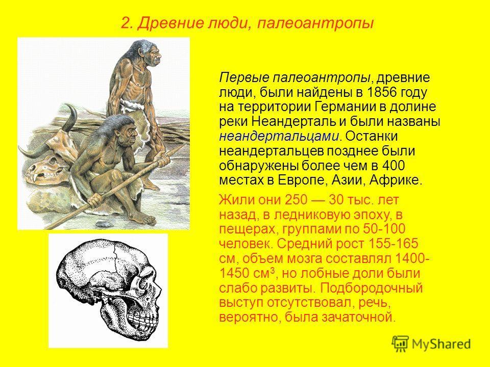 Первые палеоантропы, древние люди, были найдены в 1856 году на территории Германии в долине реки Неандерталь и были названы неандертальцами. Останки неандертальцев позднее были обнаружены более чем в 400 местах в Европе, Азии, Африке. Жили они 250 30