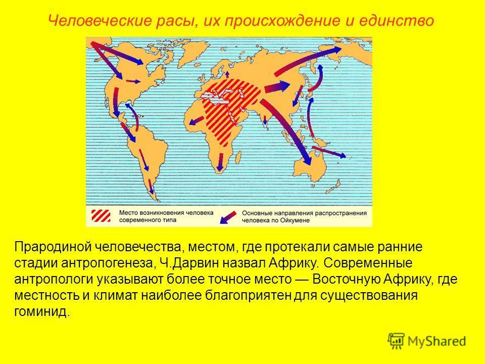 Человеческие расы, их происхождение и единство Прародиной человечества, местом, где протекали самые ранние стадии антропогенеза, Ч.Дарвин назвал Африку. Современные антропологи указывают более точное место Восточную Африку, где местность и климат наи