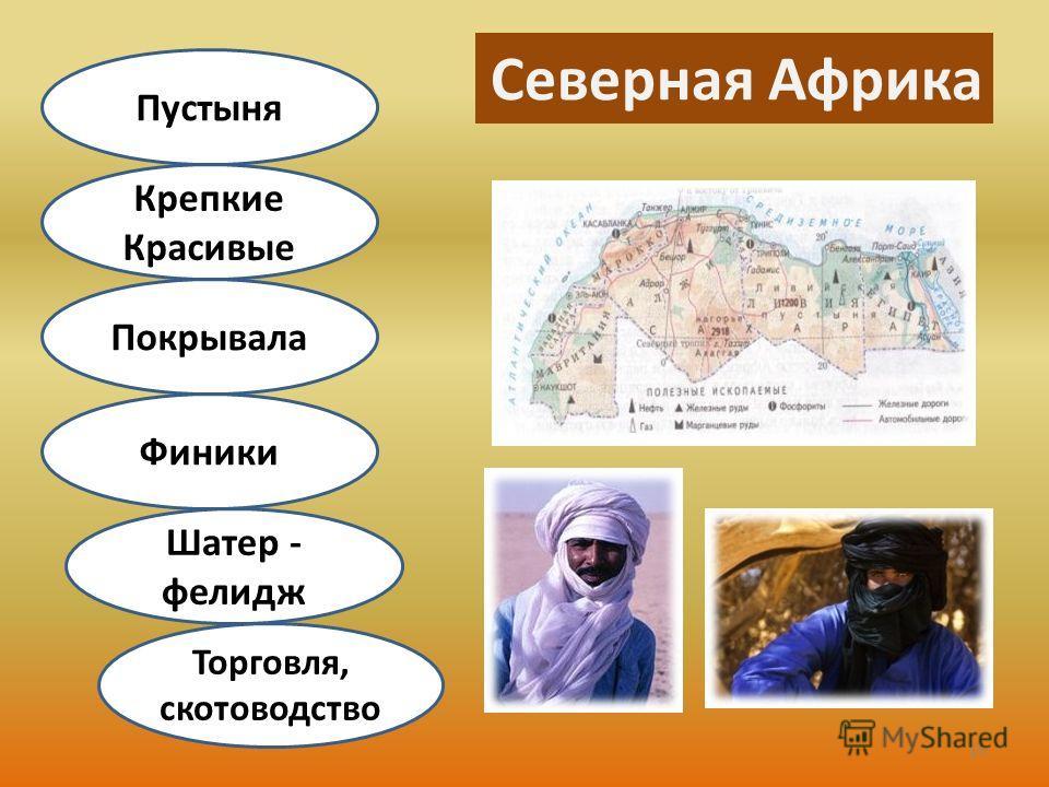 Северная Африка Торговля, скотоводство Шатер - фелидж Финики Покрывала Крепкие Красивые Пустыня 15
