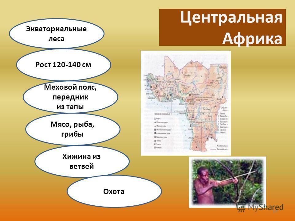 Центральная Африка Экваториальные леса Рост 120-140 см Меховой пояс, передник из тапы Мясо, рыба, грибы Хижина из ветвей Охота 16