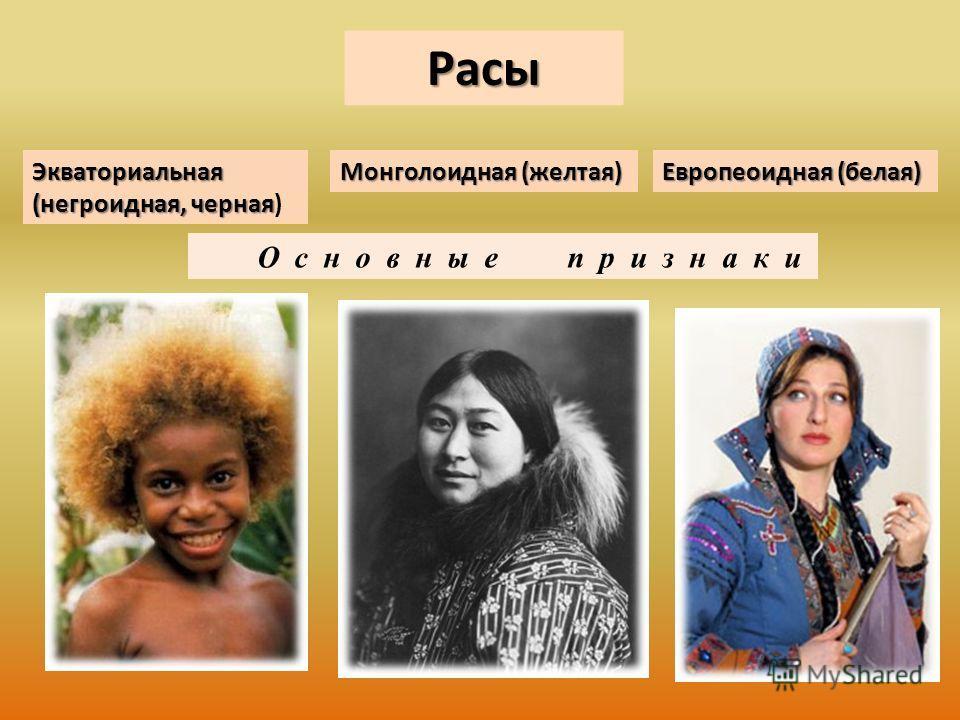 Расы О с н о в н ы е п р и з н а к и Европеоидная (белая) Монголоидная (желтая) Экваториальная (негроидная, черная Экваториальная (негроидная, черная)