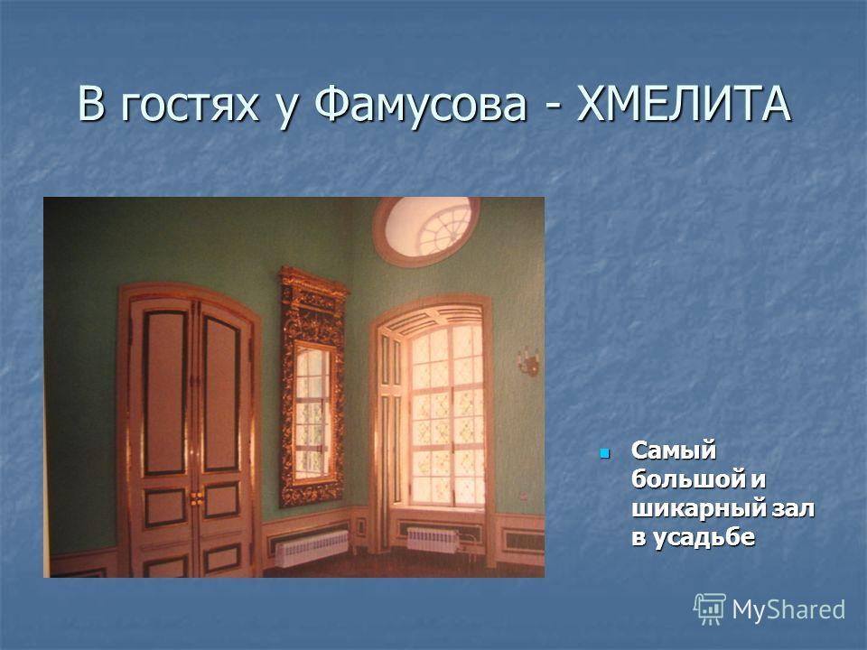 В гостях у Фамусова - ХМЕЛИТА Самый большой и шикарный зал в усадьбе Самый большой и шикарный зал в усадьбе