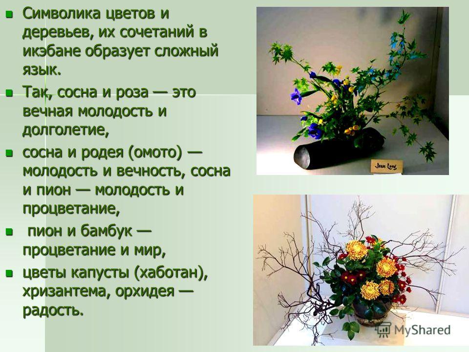 Символика цветов и деревьев, их сочетаний в икэбане образует сложный язык. Символика цветов и деревьев, их сочетаний в икэбане образует сложный язык. Так, сосна и роза это вечная молодость и долголетие, Так, сосна и роза это вечная молодость и долгол
