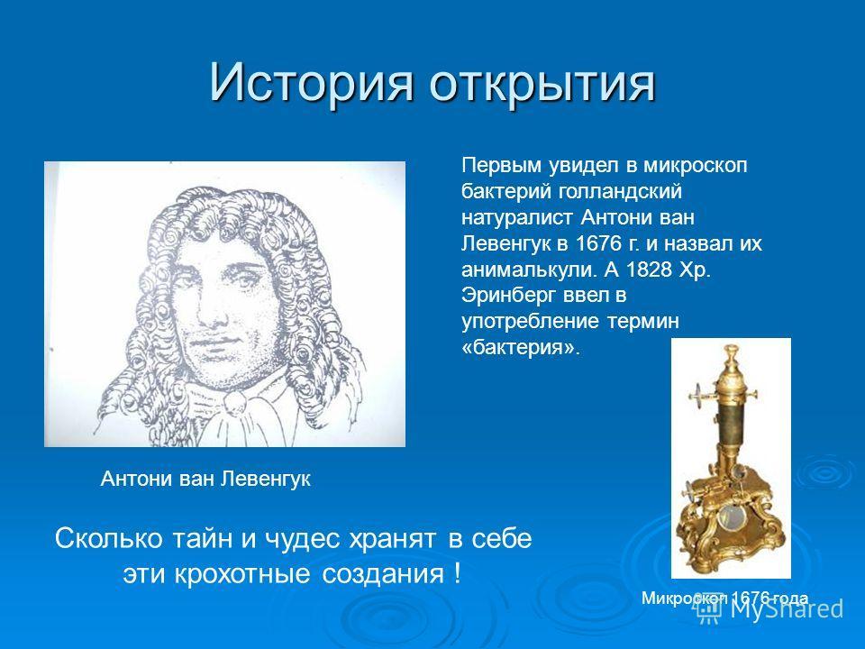 История открытия Первым увидел в микроскоп бактерий голландский натуралист Антони ван Левенгук в 1676 г. и назвал их анималькули. А 1828 Хр. Эринберг ввел в употребление термин «бактерия». Антони ван Левенгук Микроскоп 1676 года Сколько тайн и чудес