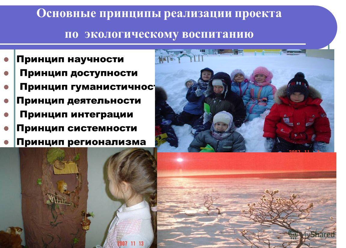 Основные принципы реализации проекта по экологическому воспитанию Принцип научности Принцип доступности Принцип гуманистичности Принцип деятельности Принцип интеграции Принцип системности Принцип регионализма