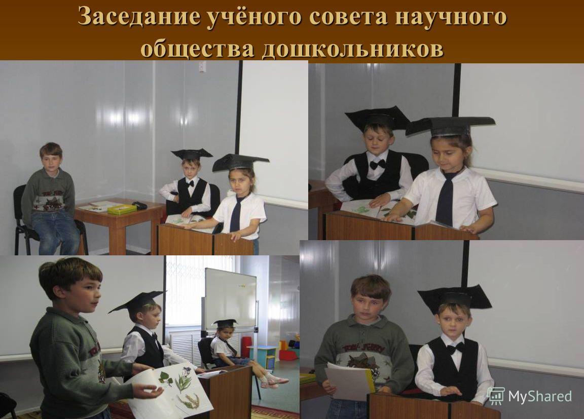 Заседание учёного совета научного общества дошкольников