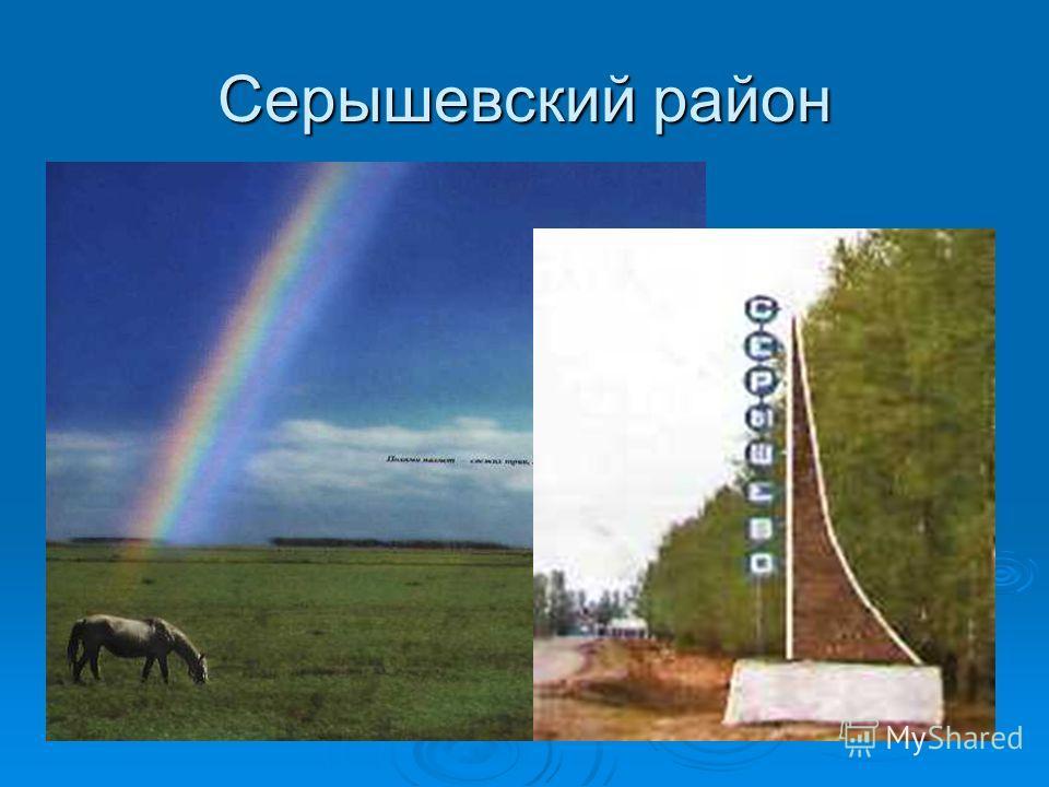 Серышевский район