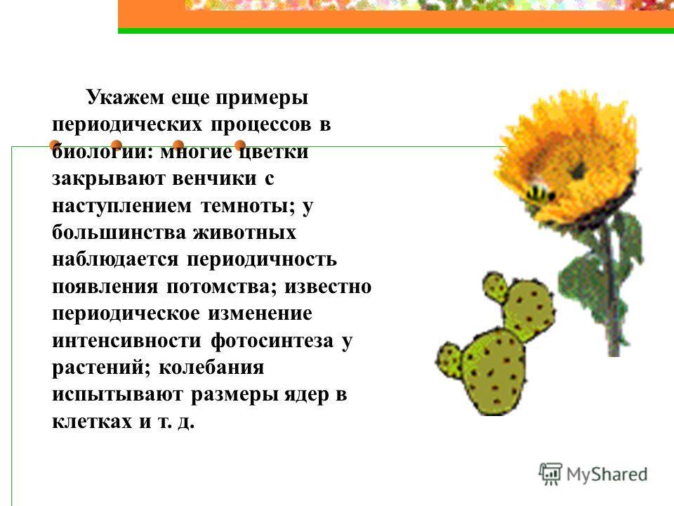 Укажем еще примеры периодических процессов в биологии: многие цветки закрывают венчики с наступлением темноты; у большинства животных наблюдается периодичность появления потомства; известно периодическое изменение интенсивности фотосинтеза у растений