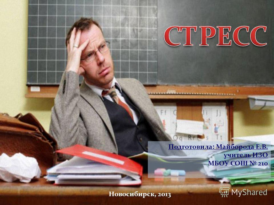 Подготовила: Майборода Е.В. учитель ИЗО МБОУ СОШ 210 Новосибирск, 2013