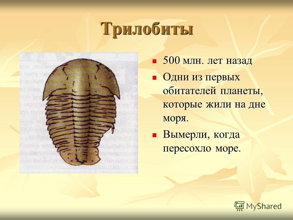 Трилобиты 500 млн. лет назад 500 млн. лет назад Одни из первых обитателей планеты, которые жили на дне моря. Одни из первых обитателей планеты, которые жили на дне моря. Вымерли, когда пересохло море. Вымерли, когда пересохло море.