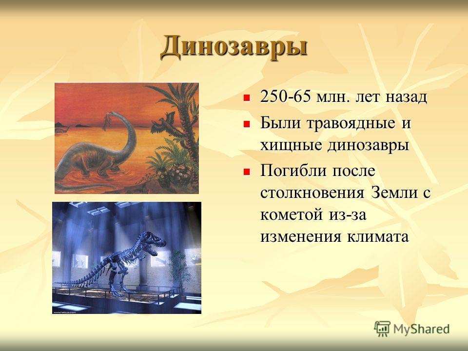 Динозавры 250-65 млн. лет назад 250-65 млн. лет назад Были травоядные и хищные динозавры Были травоядные и хищные динозавры Погибли после столкновения Земли с кометой из-за изменения климата Погибли после столкновения Земли с кометой из-за изменения