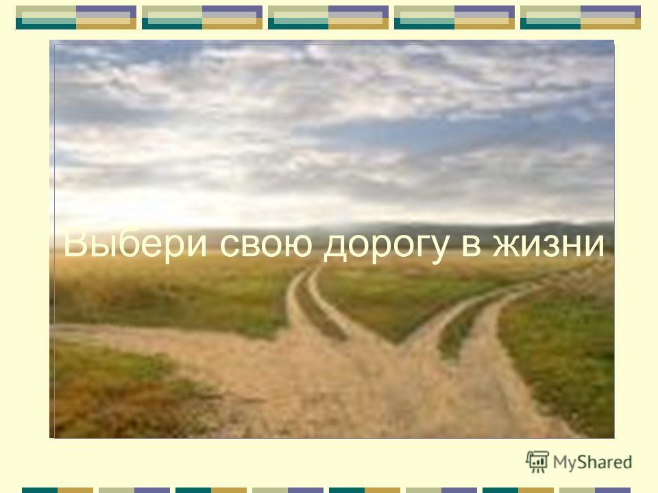 Выбери свою дорогу в жизни